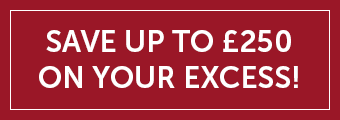 Save up to £250 on your Excess